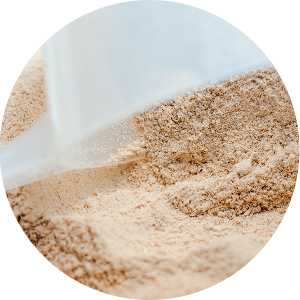 protein powder with scoop